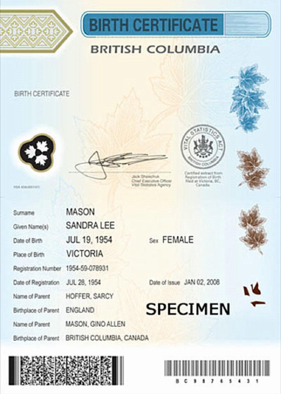 Birth certificateg aiddatafo Choice Image